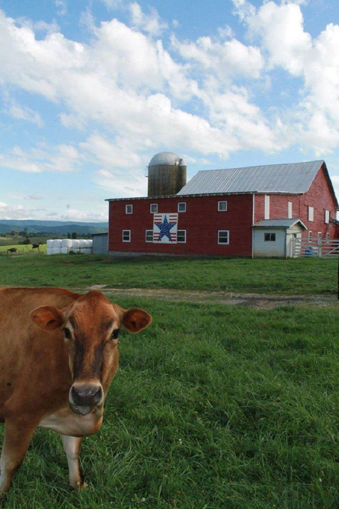 Take a Relaxing Drive on Monroe County's Rural Heritage Quilt Trail