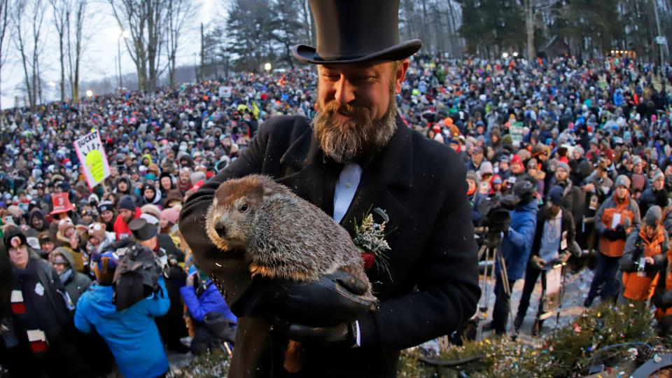 Groundhog Declares an Early Spring