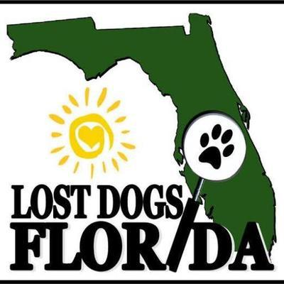 Protect your pet with the City of Vero Beach Police's pet tag registration program