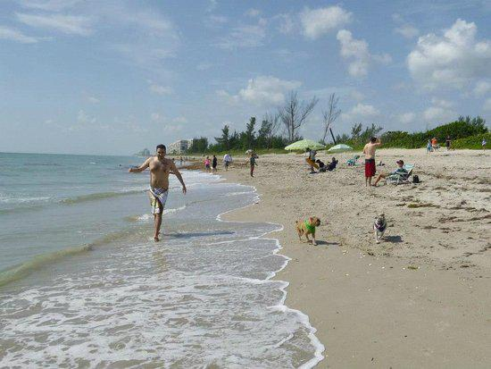 Walton Rocks Beach / Dog Park in Jensen Beach