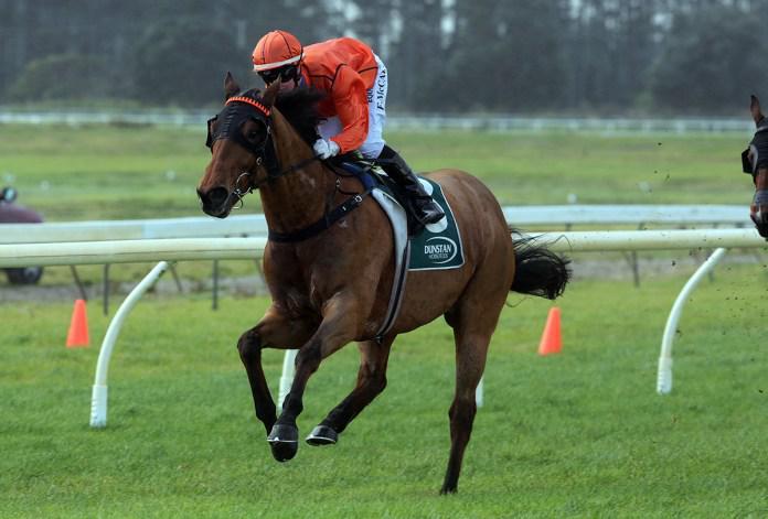 Acutus continues winning run at Ruakaka