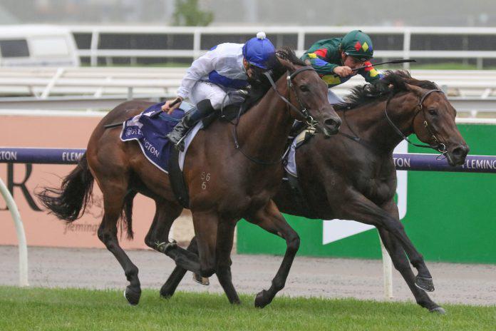 Williams bullish on Catalyst and The Oaks Stud future