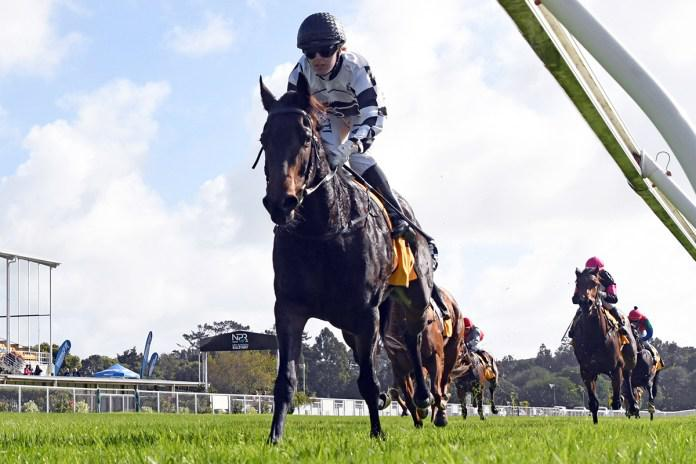 Sharrock duo quinella opening race at New Plymouth