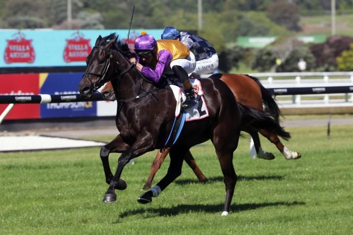 Brownes continue Aussie raid