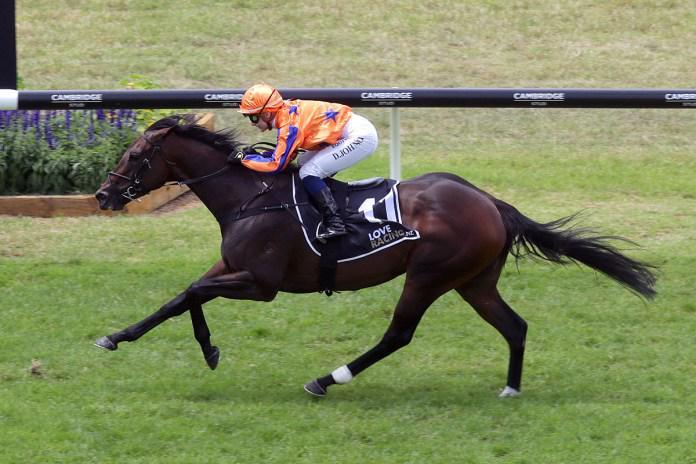 Mild lameness advised for ace Kiwi mare
