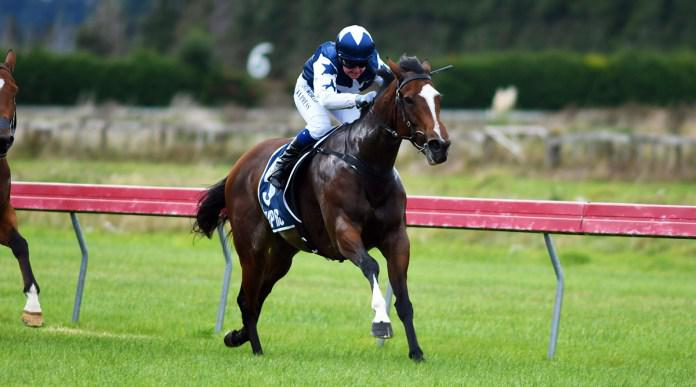 Miss Ricky Bobby back to winning form at Woodville