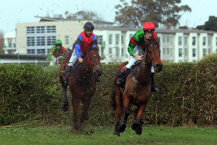 Mesmerize too strong in feature steeplechase