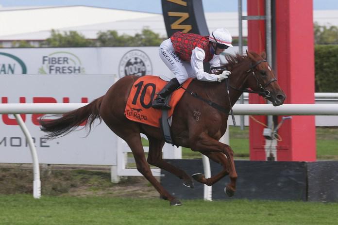 Repeat dose sought for Musigny Lass at Te Rapa
