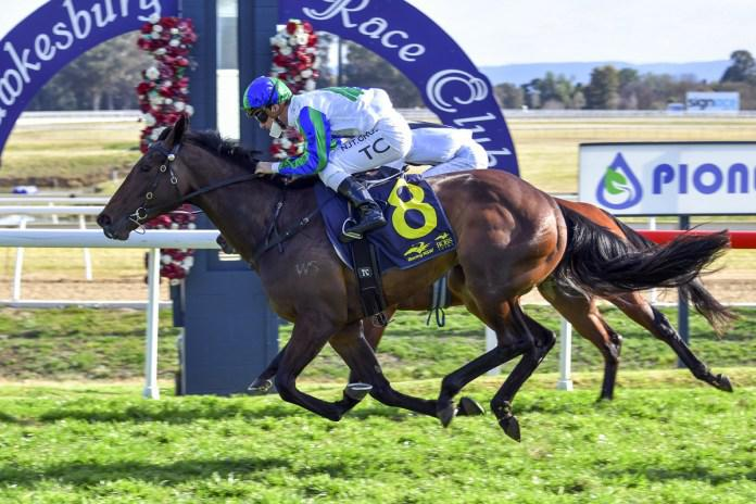 Perfect start for Tivaci filly