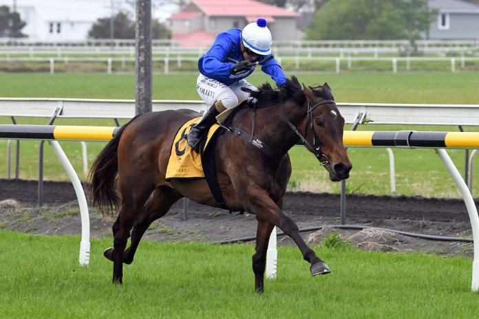 Satherley hot on Supreme Heights for Rotorua feature