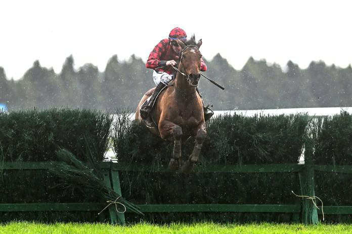 Champion jumper salutes in Grand National Steeplechase