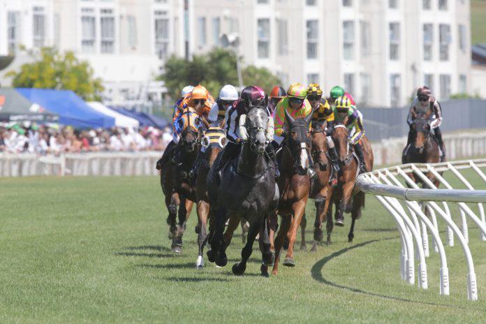 Waikato Racing Clubs discuss future options