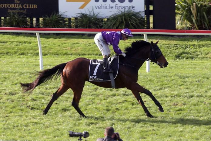 The Good Fight scores knockout in Rotorua Cup