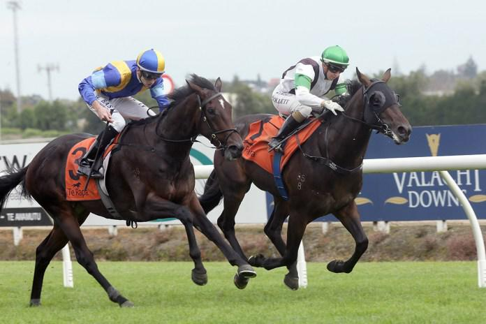 Turn The Ace takes out Te Rapa feature