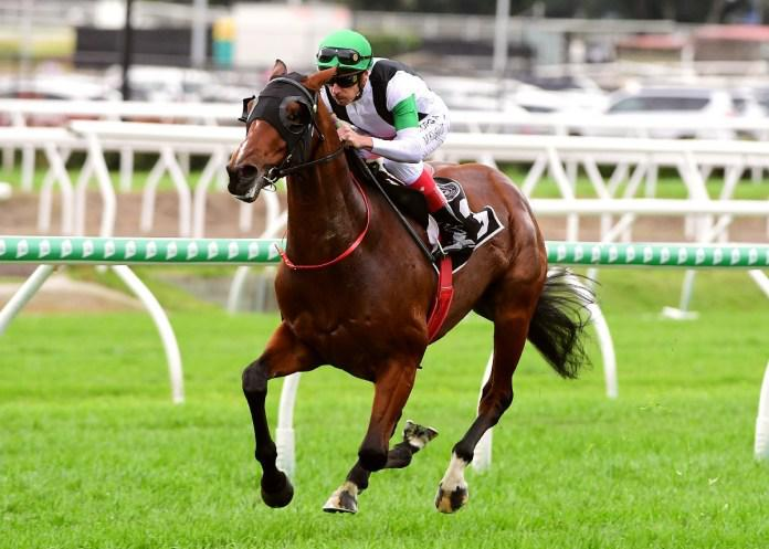 Syndicates paying dividends for Pike supporters