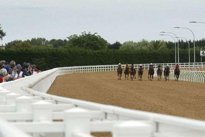 Cambridge Jockey Club ready to host first synthetic track meeting