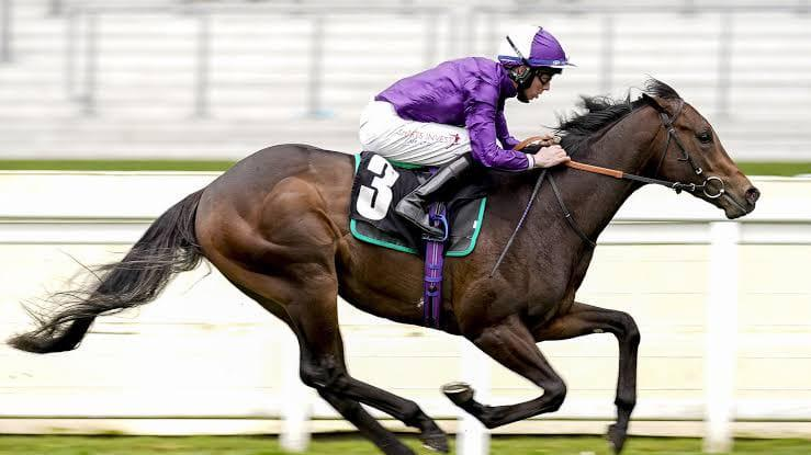 Phoenix Stakes Preview
