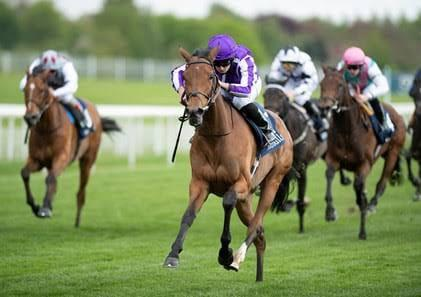 Yorkshire Oaks Preview