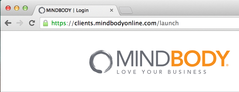 MindBody Online Review - Accountant's Perspective