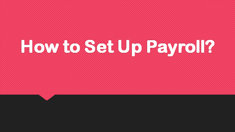 How to Set Up Payroll?