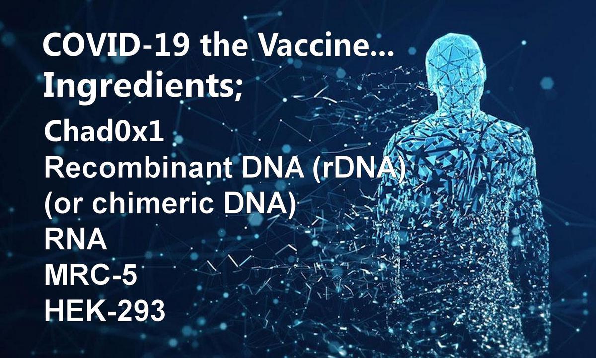 COVID-19 Vaccine ingredients