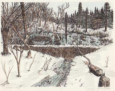 Pen and Ink Drawings for Winter