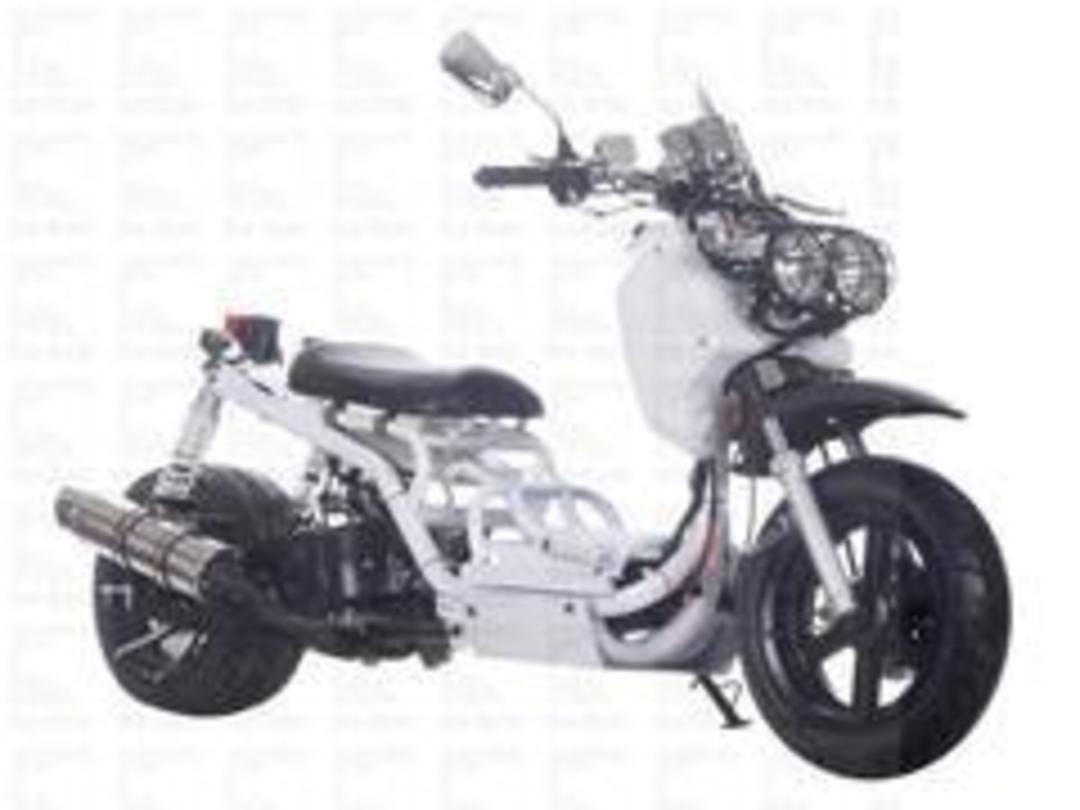CMS 49cc | 50 MADDOG Moped | Gas Motor Scooter - FREE SHIPPING for Sale (  MP 12068 )
