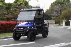 LINHAI BIG HORN 200cc GVX UTV - Brand New! ( UTV 4011 )