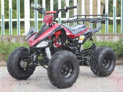 125cc Kids ATV free shipping https://www.countyimpports.com