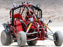 See our Video Review on this 150CC GO KART!