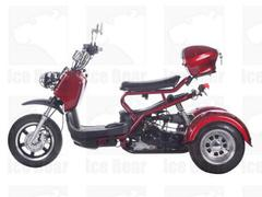 3 Wheel Trike Motorcycle!