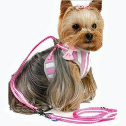 dogo easygo pink and white striped step in harness with a bow attached to front