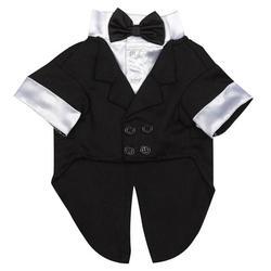 black and white tuxedo  dog attire