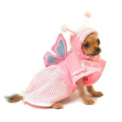 pretty pink butterfly halloween dog costume