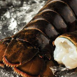 Cold Water Lobster Tails Delivered