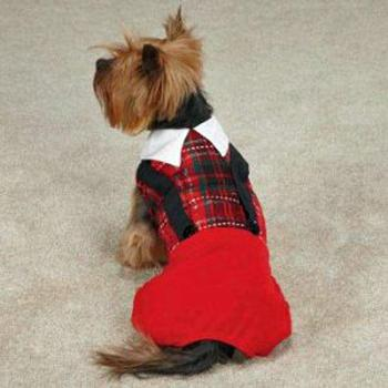 red and black Tartan with suspenders dog Jumper