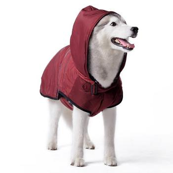 classic waterproof maroon dog trench coat