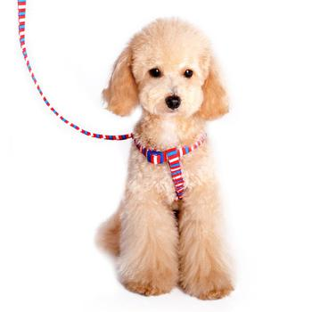 dogo easyclick step striped in dog harness