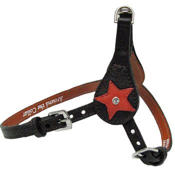Leather Star Step in Harness