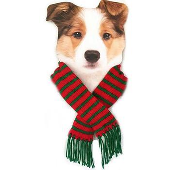 blue velvet Noel holiday dog dress