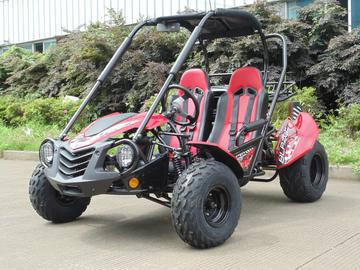Trailmaster go kart on sale